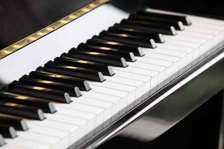 מפגש מוסיקלי - אורגנית